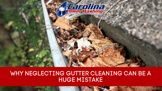 neglecting gutter cleaning